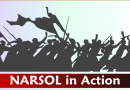 NARSOL In Action: National litigation update