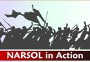 NARSOL in Action Teleconference – March 29th @ 4PM